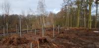 Implantation de pieux pour les bâtiments d'un Eco Resort en Wallonie Picarde
